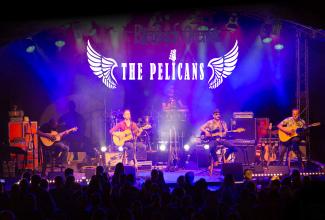 The Pelicans